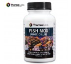 Fish Mox Amoxicillin 250 MG – 100-Count